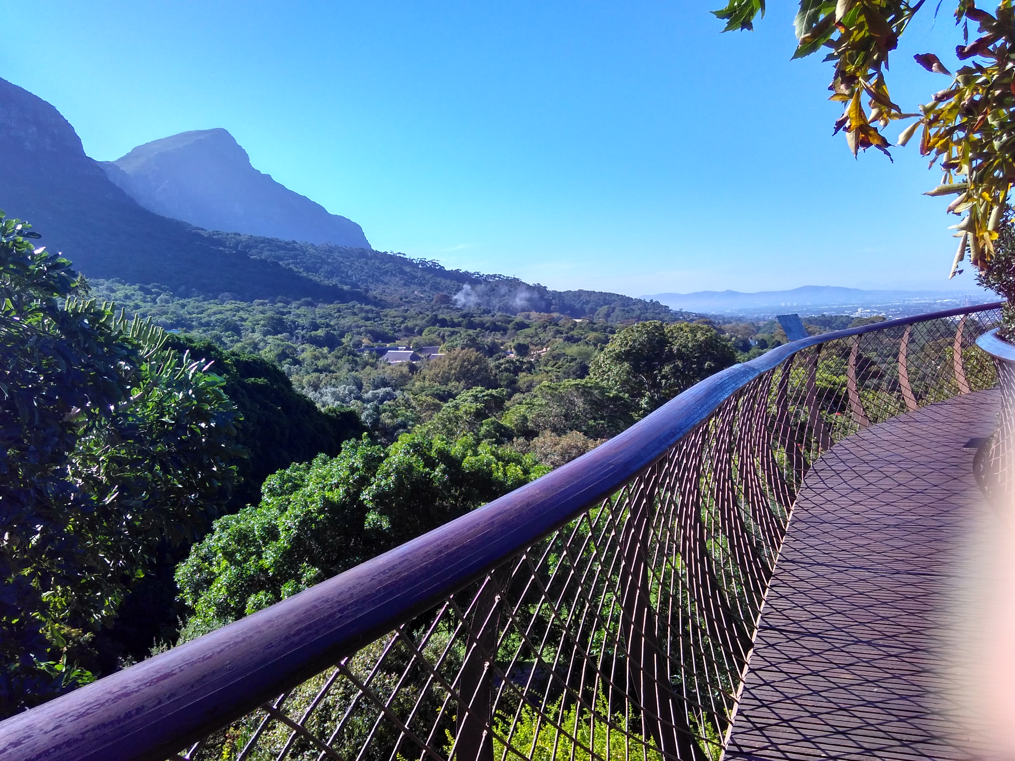 My favourite things about Cape Town and its not the penguins ...